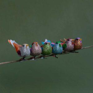 PARADISE BIRD DECORATION